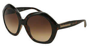 Tiffany TF4116 80153B BROWN GRADIENTDARK HAVANA