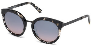 Web Eyewear WE0196 55C