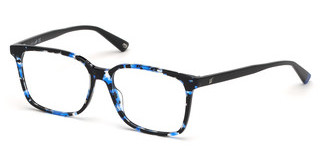 Web Eyewear WE5292 55A