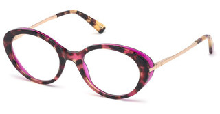 Web Eyewear WE5302 056