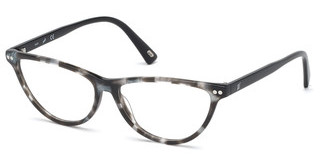 Web Eyewear WE5305 005