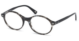 Web Eyewear WE5306 005